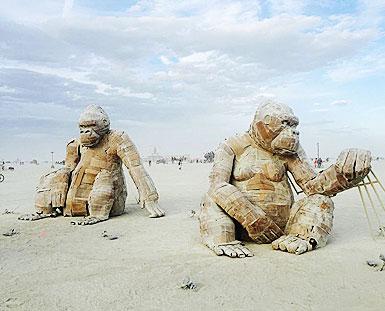 色彩警报:沙漠石色