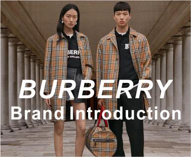BURBERRY品牌分析之一