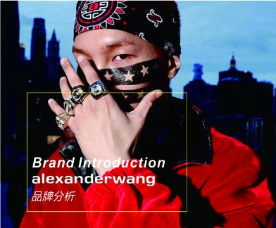 Alexander Wang品牌分析