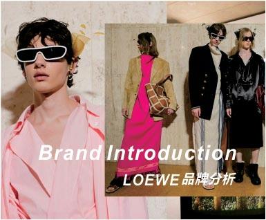 LOEWE品牌分析